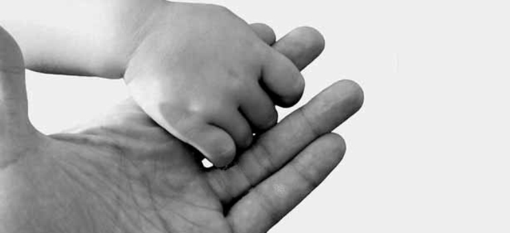 manos viveros