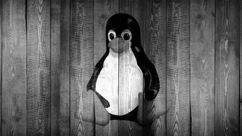 Linux, bueno y poco usado