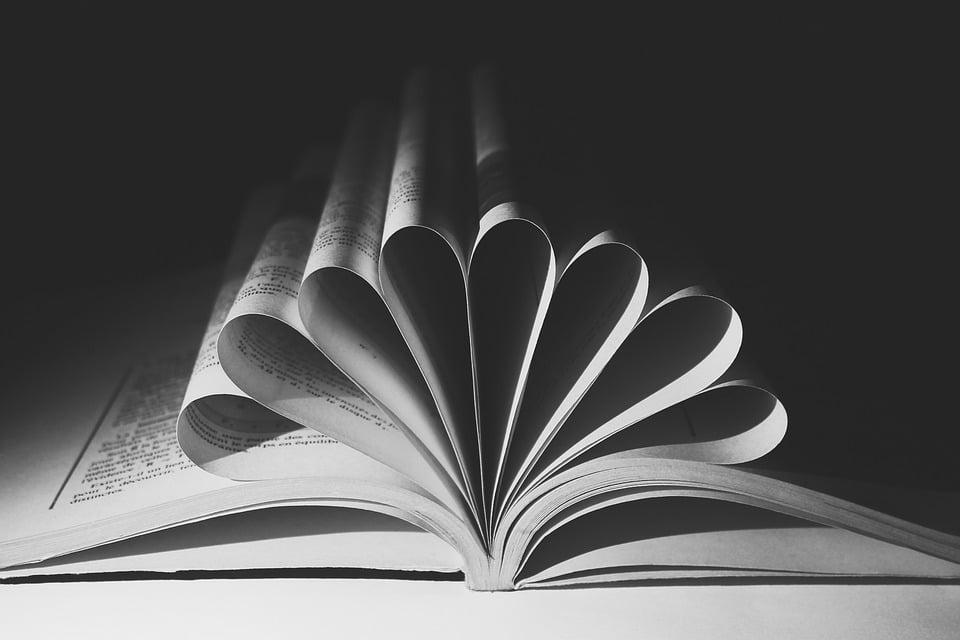Libros por el Día de la Tolerancia