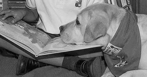 Un programa de lectura pionero en el mundo en Las Armas