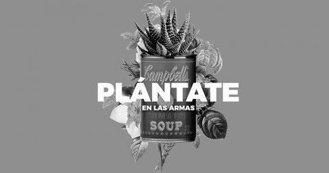 Plantea Las Armas